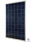 Солнечный модуль Sunways ФСМ-260П